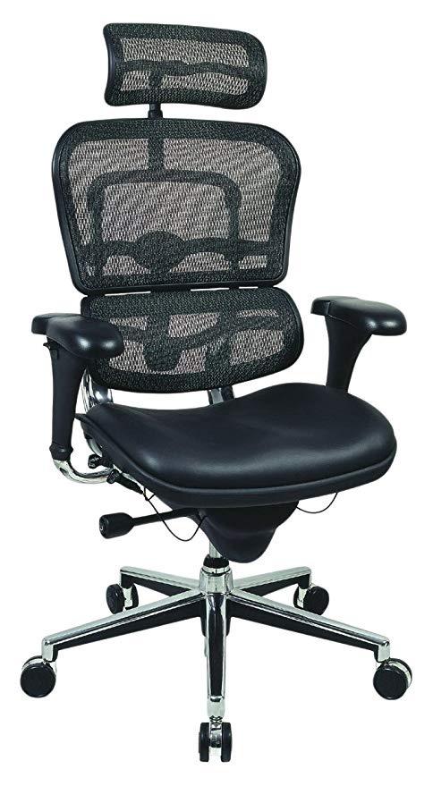 Ergo Human High Back Mesh Chair - BillLentis.com