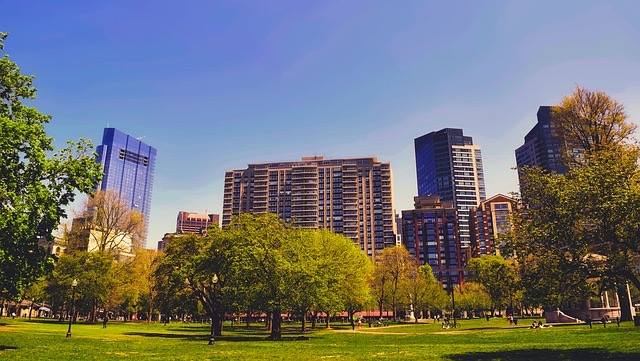 Boston Summer Tours - BillLentis.com