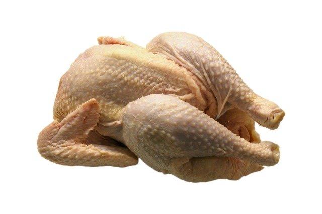 Puede cocinar pollo - BillLentis.com