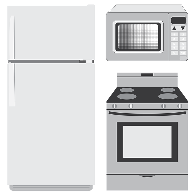 Can Microwaves Kill Bacteria?