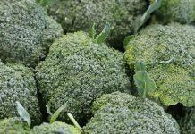 How Microwave Broccoli - BillLentis.com