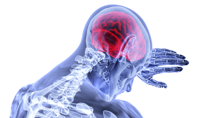 Can Standing Desk Cause Back Pain - Bill Lentis Media