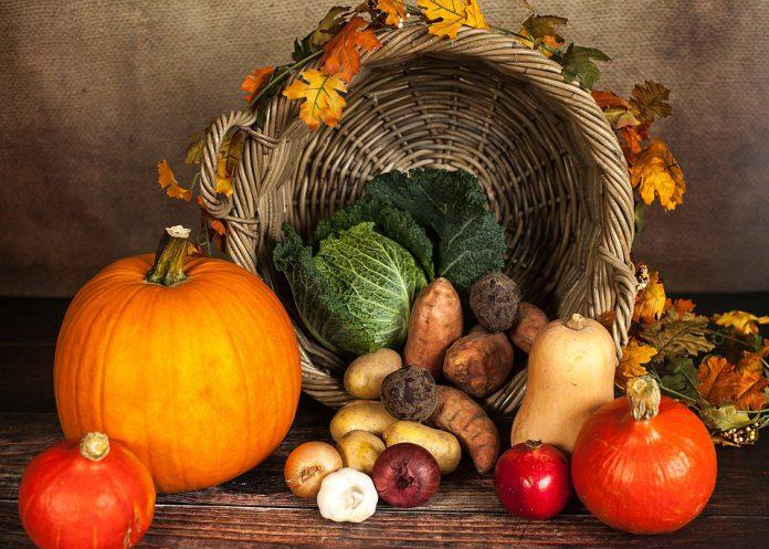 Garden Vegetables List - Bill Lentis Media