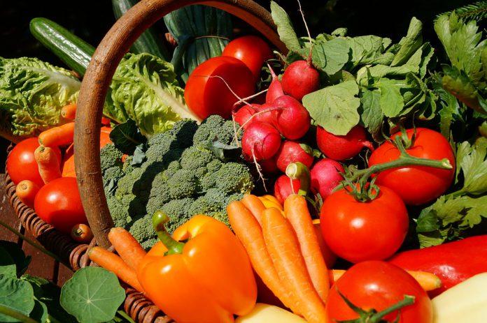How To Start A Vegetable Garden - Bill Lentis Media