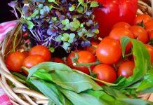 Starting A Vegetable Garden - Bill Lentis Media