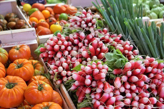 Vegetable Garden Design - Bill Lentis Media