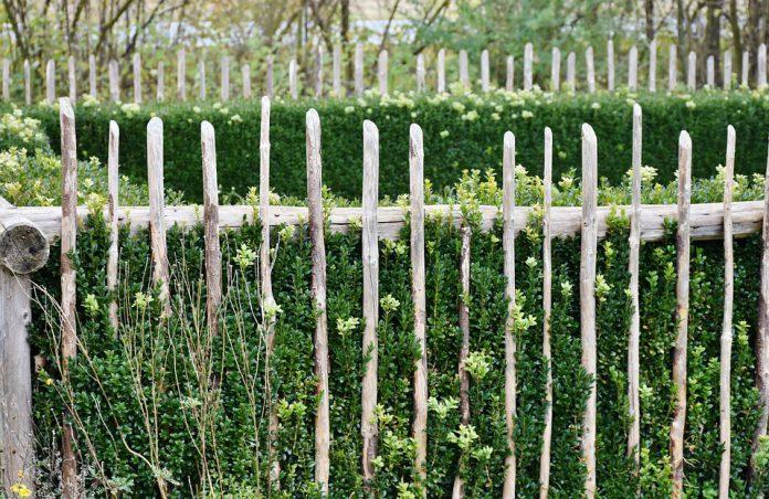 Vegetable Garden Fence - Bill Lentis Media