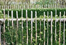 Vegetable Garden Fence - Bill Lentis Media