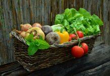Free Vegetable Garden Planner - Bill Lentis Media